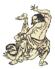 ju jitsu lottatori